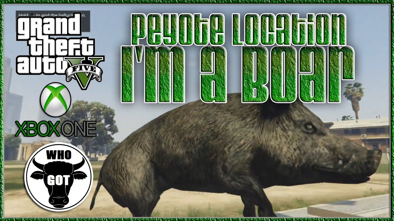 GTA V Play As A Wild Boar & Rare Animals Peyote Easter Egg Location